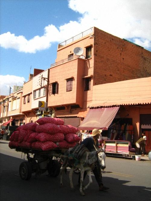 Maroko4_500