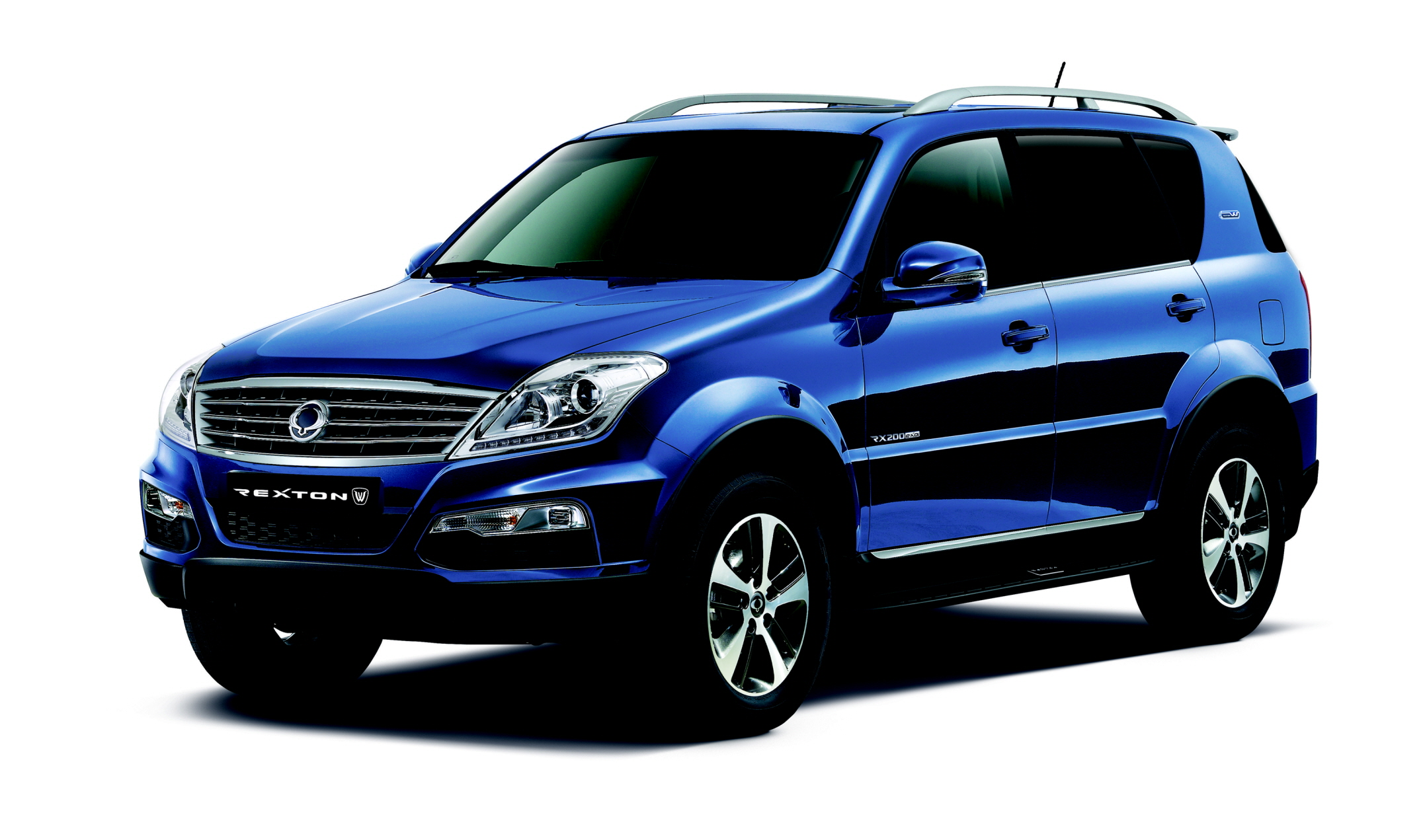 Rexton Dandy Blue