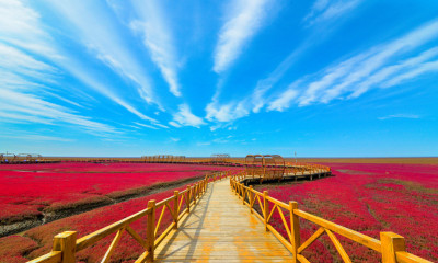 The Panjin Red Beach National Scenic Corridor (PRNewsfoto/Panjin Red Beach Wetland Resort)