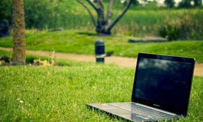 laptop w parku - bez sensu
