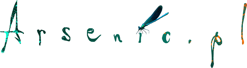 21-1-17 logo z tła z ważką mniejszy